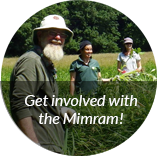 Mimram get involved