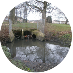 SUDS project: Lewsey Brook is one of the potential sites