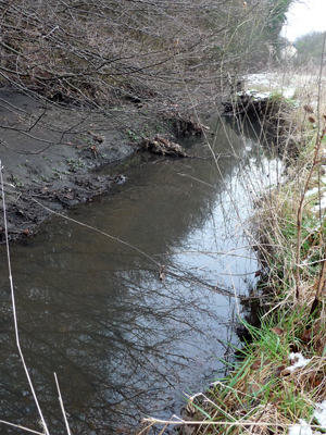 Restoration of Stevenage Brook