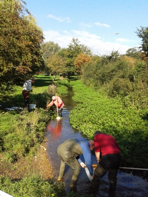 Volunteers being trained in Riverfly Monitoring