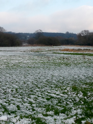 Restore the river flow at Linces Farm