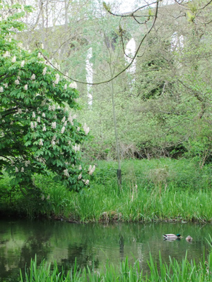 Revisit failed river restoration at Digswell