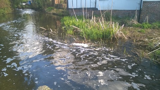 Pollution in River Lea